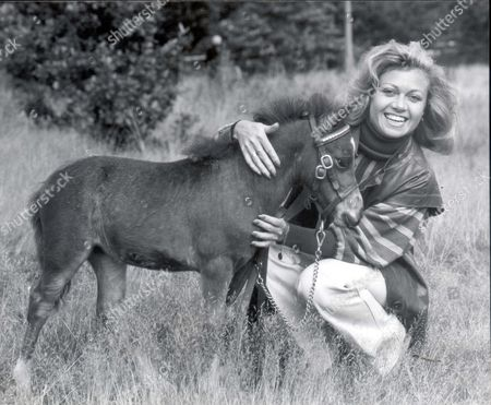 Elaine Paige Actress 1979 Elaine Paige With A Six Week Old Furniture Falabella Named Evita. Evita Was All Set For A Short Run Yesterday - Across Barnes Common In South West London. The Six Week Old Miniature Falabella Horse Named After The Hit Musical Had To Be Restrained By Elaine Paige The Shows Original Star.... actress