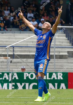 Stock Photo of Tigres's Jorge Torres Nilo celebrate the goal after his team score against Pumas during a Mexican Soccer Leage game in Mexico City