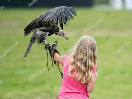 Savannah Phillips with her face painted, gets to meet a vulture during the Bird of Prey display