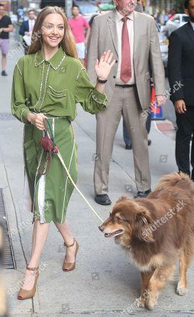 Amanda Seyfried and her dog Finn