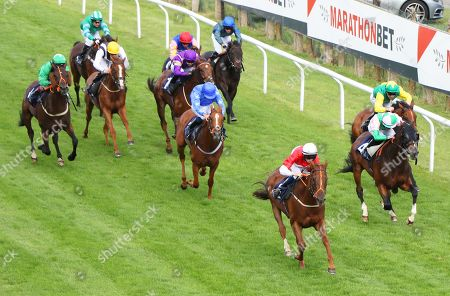 Editorial image of Horse Racing - 07 Aug 2019