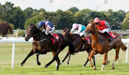 Stock Photo of MASTER MCGRATH (Kevin Stott) beats SAND DIEGO (right) in The Sean Michael Daley And Lettuce Christmas Party EBF Maiden Stakes Sandown