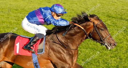Editorial picture of Horse Racing - 08 Aug 2019