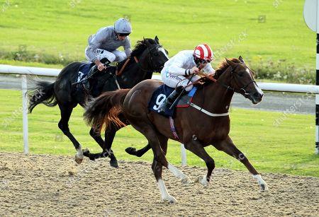 Horse Racing - 12 Aug 2019
