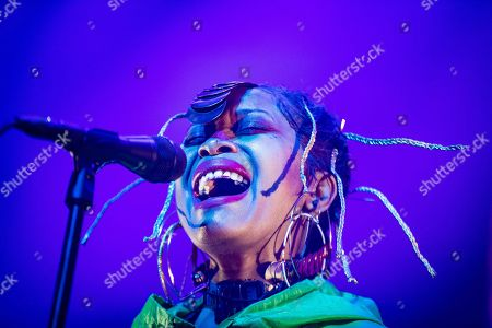 Erykah Badu performs at pop venue 013 in Tilburg, the Netherlands, 12 August 2019.