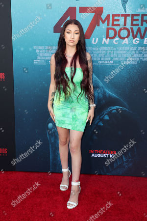 Editorial picture of '47 Meters Down: Uncaged' film premiere, Arrivals, Regency Village Theatre, Los Angeles, USA - 13 Aug 2019