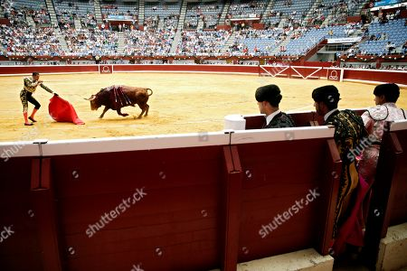 Editorial image of San Sebastian's bullfighting Fair, Spain - 14 Aug 2019