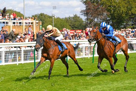 Winner of The M J Church Novice StakesAluquair ridden by James Doyle and trained by Simon Crisford during Horse Racing at Salisbury Racecourse on 15th August 2019