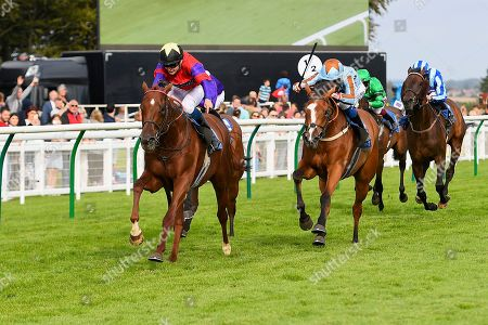 Stock Picture of Winner of The Kevin Hall & Pat Boakes Memorial Handicap Land of Oz ridden by Ryan Tate and trained by Sir Mark Prescott   during Horse Racing at Salisbury Racecourse on 15th August 2019