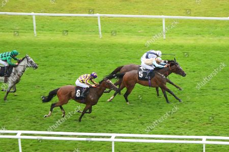 Editorial image of Horse Racing - 16 Aug 2019