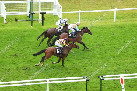 KHEROS (5) ridden by Pierre-Louis Jamin beating Freckles (far) & Skyman (6) in The Tom Mitchell 65th Birthday British EBF Fillies' Novice Stakes at Newbury Copyright: Ian Headington/racingfotos.com