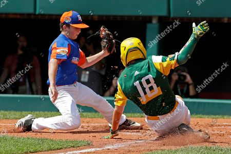 Tyler Phillips, Grayson Newman. Coon Rapids, Minnesota's Tyler Phillips (18) scores ahead of the tag by Bowling Green, Kentucky's Grayson Newman during the second inning of a baseball game at the Little League World Series tournament in South Williamsport, Pa