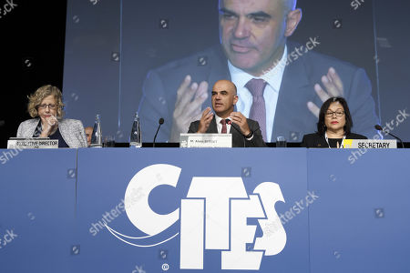 Swiss Interior Minister Alain Berset (C) sitting next to Executive Director of the United Nations Environment Programme Inger Andersen (L) and CITES Secretary-General Ivonne Higuero (R) during the opening remarks of the World Wildlife Conference - CITES CoP18, in Geneva, Switzerland, 17 August 2019. Delegates from over 180 countries gather in Geneva for Convention on International Trade in Endangered Species of Wild Fauna and Flora (CITES) conference to debate protection of species as elephants, giraffes, sharks, rhinos and some plant and tree species.