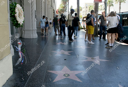 Stock Photo of A wreath and a set of flowers stand over US actor Peter Fondas star on the Walk of Fame on Hollywood Blvd. in Hollywood, California, USA, 17 August 2019. Fonda died on 16 August from lung cancer, he was the son of legendary actor Henry Fonda and starred in the 1969 classic movie 'Easy Rider.' He was 79.