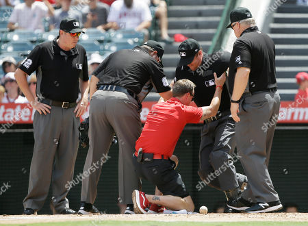 Home plate umpire Chris Segal, right, if lifted by the Los Angeles Angels trainer Adam Nevala, with umpires Doug Eddings, Chad Whitson, left, and Bill Miller, right, watching, after Segal gets hit by a foul ball during the first inning of a baseball game between the Los Angeles Angels and the Chicago White Sox in Anaheim, Calif