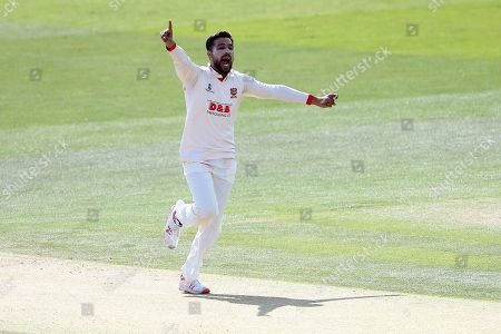 Mohammad Amir of Essex celebrates taking the wicket of Ollie Rayner during Kent CCC vs Essex CCC, Specsavers County Championship Division 1 Cricket at the St Lawrence Ground on 19th August 2019