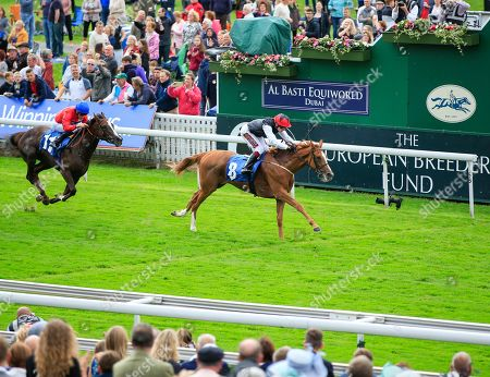 22nd August 2019 , York Racecourse, York, Great Britain; 2019 Darley Yorkshire Oaks/Ladies Day ; Search For A Song ridden by Oisin Murphy (black & white) on the winning line in The British EBF & Sir Henry Cecil Galtres Stakes Credit Conor Molloy/News Images