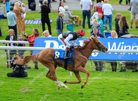 22nd August 2019 , York Racecourse, York, Great Britain; 2019 Darley Yorkshire Oaks/Ladies Day ; Search For A Song ridden by Oisin Murphy after winning The British EBF & Sir Henry Cecil Galtres Stakes Credit Conor Molloy/News Images