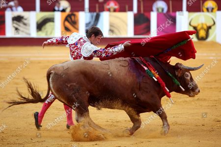 Spanish bullfighter Julian Lopez 'El Juli' gives a pass to his first bull at La Malagueta bullring in Malaga, Spain, 19 August 2019. The event, which is celebrated within the framework of the Malaga Fair, runs from 15 to 24 August.