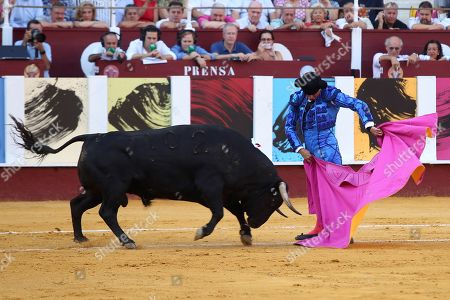 Spanish bullfighter Jose Maria Manzanares gives a pass to his first bull at La Malagueta bullring in Malaga, Spain, 19 August 2019. The event, which is celebrated within the framework of the Malaga Fair, runs from 15 to 24 August.