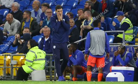 Huddersfield Town caretaker manager Mark Hudson shows a look of dejection after a late missed chance to equalise