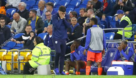 Stock Image of Huddersfield Town caretaker manager Mark Hudson shows a look of dejection after a late missed chance to equalise