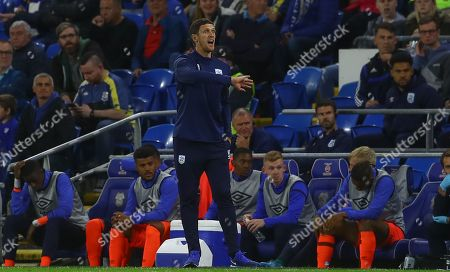 Stock Photo of Huddersfield Town caretaker manager Mark Hudson gestures on the touchline