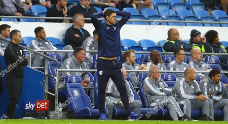 Huddersfield Town caretaker manager Mark Hudson shows a look of dejection