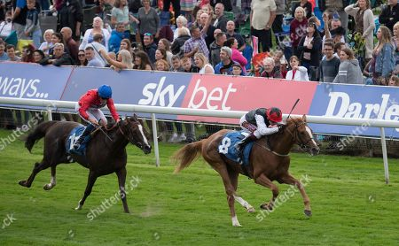 Search For A Song ridden by Oisin Murphy wins the British EBF & Sir Henry Cecil Galtres Stakes at York Racecourse