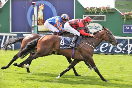 VALDERMORO (8) ridden by Tony Hamilton and trained by Richard Fahey winning The Group 3 Tattersalls Acomb Stakes over 7f (£100,000) during the Ebor Festival at York Racecourse, York