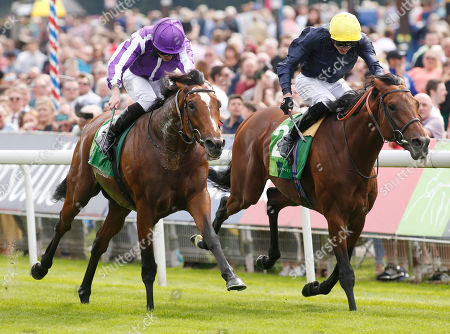 JAPAN and Ryan Moore Win the Juddmonte International Stakes for trainer Aiden O'Brien after photofinish with Crystal Ocean, James Doyle (yellow cap) for Sir Michael Stoute York Racecourse
