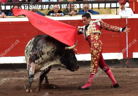 Stock Photo of Spanish bullfighter Jose Maria Manzanares fights a bull during the 5th day of the Semana Grande (Big Week)'s fair at Vista Alegre bullring in Bilbao, Basque Country, northern Spain, 21 August 2019. The fair runs from 17 to 25 August.
