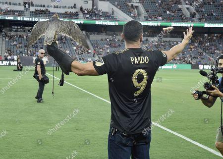 J D Pardo
