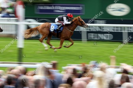 SEARCH FOR A SONG (8) ridden by Oisin Murphy and trained by Dermot Weld (Ire) winning The Listed British EBF & Sir Henry Cecil Galtres Stakes over 1m 4f (£70,000)  during the Ebor Festival at York Racecourse, York