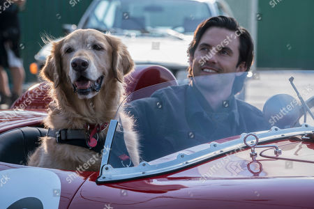 Enzo (Kevin Costner) and Milo Ventimiglia as Denny Swift