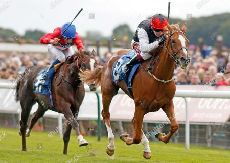 SEARCH FOR A SONG (Oisin Murphy) wins The British EBF & Sir Henry Cecil Galtres Stakes York