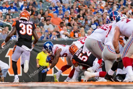 Stock Image of New York Giants running back Rod Smith (45) dives into the end zone for a touchdown during NFL football preseason game action between the New York Giants and the Cincinnati Bengals at Paul Brown Stadium in Cincinnati, OH