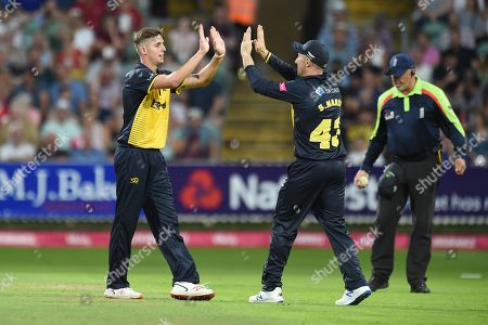 Roman Walker and Shaun Marsh of Glamorgan celebrate the wicket of Tom Abell during the Vitality T20 Blast South Group match between Somerset County Cricket Club and Glamorgan County Cricket Club at the Cooper Associates County Ground, Taunton
