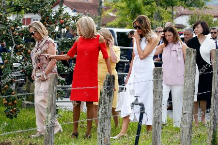 Brigitte Macron (2-L), wife of French President Emmanuel Macron, U.S. First Lady Melania Trump (C), Akie Abe (R), wife of Japan's Prime Minister Shinzo Abe, Chile's First Lady Cecilia Morel (L), Jenny Morrison (2-R), wife of Australia's Prime Minister Scott Morrison, Malgorzata Tusk (3-L), wife of European Council President Donald Tusk arrive in a field of Espelette pepper during a visit on traditional Basque culture as part of the G7 summit, in Espelette, near Biarritz, France, 25 August 2019. The G7 Summit runs from 24 to 26 August in Biarritz.