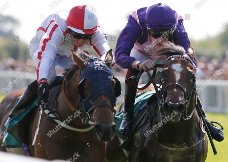QUEEN S BLADE and Duran Fentiman (red cap) Win the Tony Pyke 60th Birthday Selling Stakes for trainer Tim Easterby in second TWO HEARTS and Sam James Ripon Racecourse