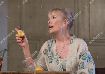 Lindsay Duncan as Diana Hesketh