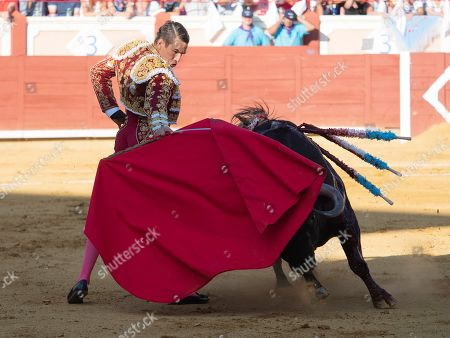 Spanish bullfighter Jose Maria Manzanares in action during the San Julian Bullfighting Fair in Cuenca, Spain, 28 August 2019.