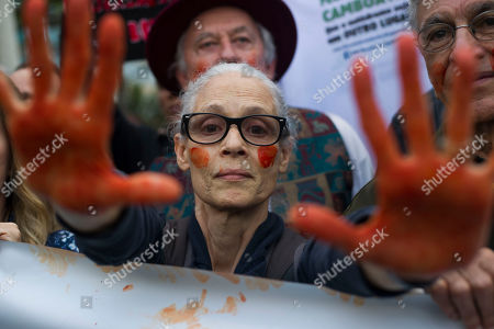 Stock Image of Brazilian actress Sonia Braga shows her red painted hands to symbolize blood, during a protest in defense of the Amazon while fires burn in that region, in Rio de Janeiro, Brazil, on Sunday, Aug, 25, 2019. Experts from the country's satellite monitoring agency say most of the fires are set by farmers or ranchers clearing existing farmland, but the same monitoring agency has reported a sharp increase in deforestation this year as well
