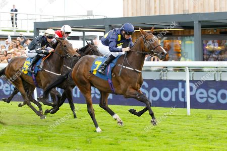 Al Rasmah and Tony Hamilton win the Sportpesa/EBF Fillies Conditions Stakes at Chester.