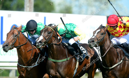 Editorial picture of Horse Racing - 31 Aug 2019
