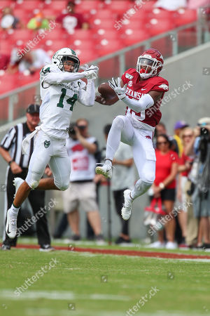 Stock Picture of Portland State defensive back Anthony Adams #14 works to knock down a ball while Arkansas receiver Tyson Morris #19 attempts to make the catch. .Arkansas defeated Portland State 20-13 in Fayetteville, AR, Richey Miller/CSM