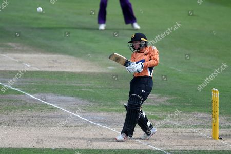 Danielle Wyatt of Southern Vipers hits the ball to the boundary during the Kia Women's Cricket Super League semi-final match between Loughborough Lightning and Southern Vipers at the 1st Central County Ground, Hove