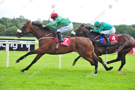Stock Image of CORK SIMSIR and Niall McCullagh win the Sean Barrett Bloodstock Insurance Maiden. Healy Racing
