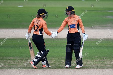 Tammy Beaumont congratulates Danielle Wyatt on reaching her half-century during the Kia Women's Cricket Super League Final match between Western Storm and Southern Vipers at the 1st Central County Ground, Hove