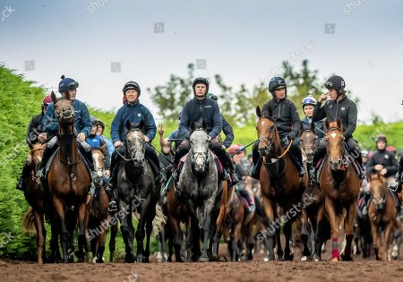 Editorial photo of Pat Smullen Champions Race for Cancer Trial Photocall, Joseph O'Brien's Yard, Co. Kilkenny  - 03 Sep 2019